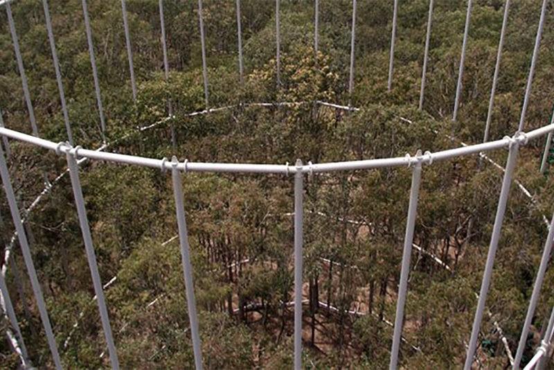 exel_free_air_CO2_enrichment_Western_Sydney